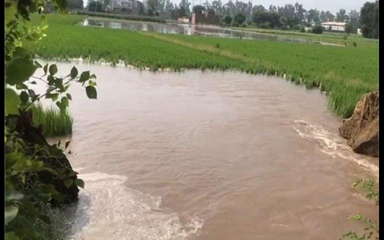 mansa-dams-crops
