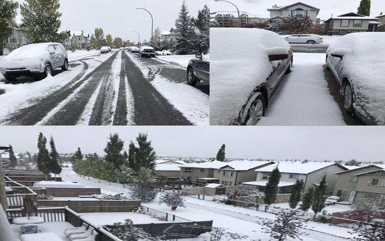 heavily-snowfall-in-alberta
