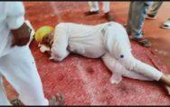 Farmer ate poison outside Parkash Singh Badal House