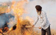 govt-appointed-nodal-officers-to-control-stubble-burning-in-punjab