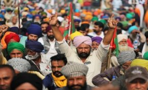 Farmers-will-celebrate-Labour-Kisan-Ekta-Diwas-today