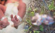 4-day-old-newborn-girl-found-in-park-near-ludhiana-lodhi-club