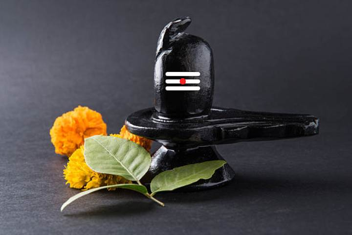 Don't forget to offer these 7 things on Shivling