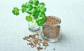 6-Surprising-Health-Benefits-of-Coriander