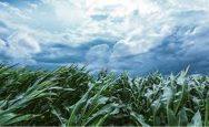 big warning for farmers
