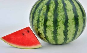 4-Health-Benefits-of-Eating-Watermelon