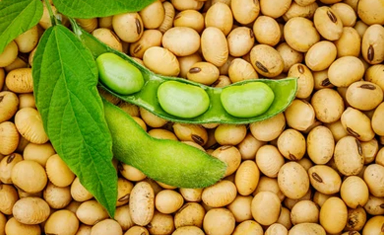 4-Health-Benefits-of-Soybean
